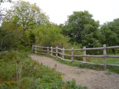 Enjoy the trails at Westminister Ponds