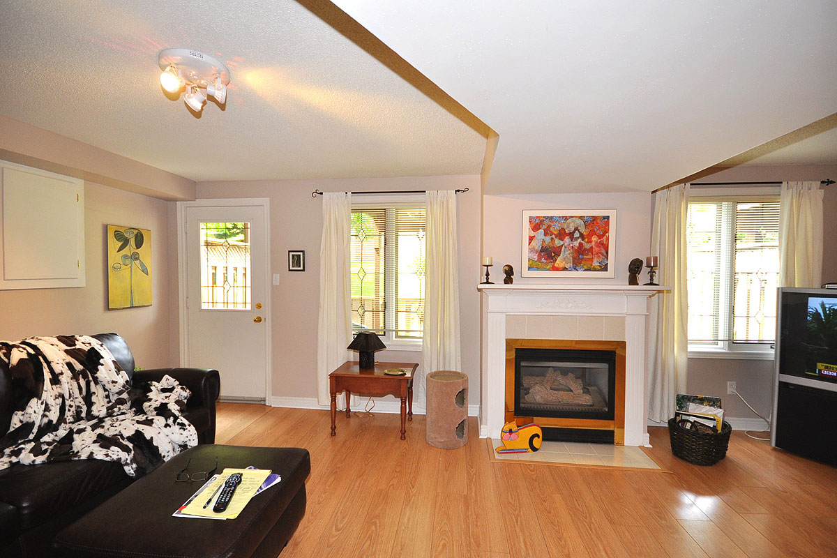 Lower level with walkout & gas fireplace