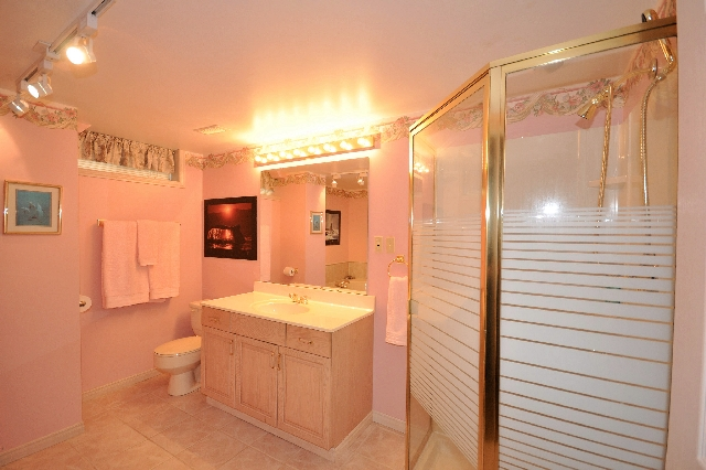 Large Lower Level Bath with whirlpool tub